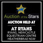 Auction of the Stars December 2015