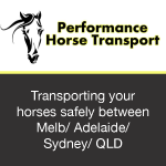 Performance Horse Transport