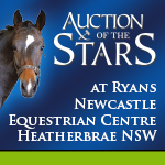Auction of The Stars December 2014