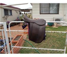 Brown Ramsey Show Saddle