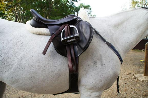Thorowgood T8 Jumping Saddle For Sale Top Horse