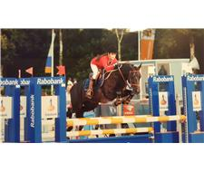 Showjumping pony