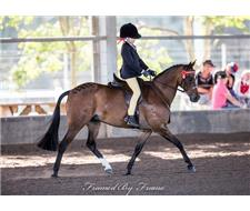 Beautiful Show/Leading Rein, Pony Club