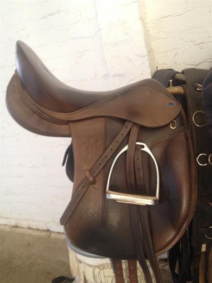 Southern Stars Dressage Saddle Top Horse