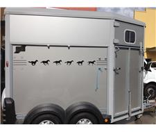 Ifor Williams Warmblood Horse Float