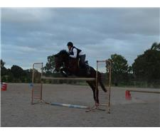 Experienced All Rounder - FOR LEASE