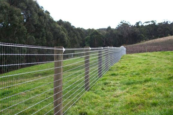 Equi Mesh A Great Value Horse Fence Top Horse