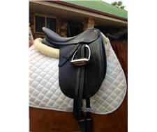 16.5'' collegiate dressage saddle