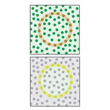 Horses are unable to see the brown circle, but they can see the green one.