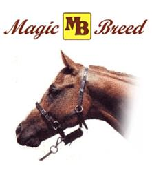 magic breed foaling alarm instructions