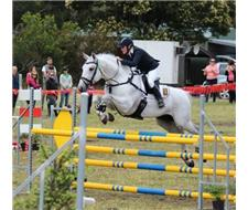 Grande Farnese. 1* Eventer