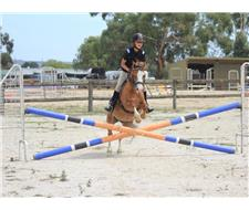 Super young rider PC/show pony