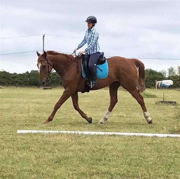 All-rounder-excel in eventing