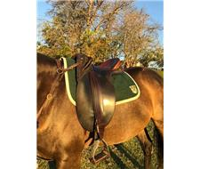 Neil Mackellar Stock Saddle