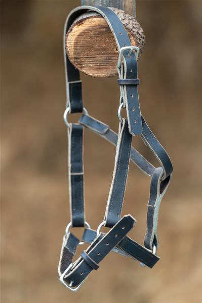 Horse Halter – Leather