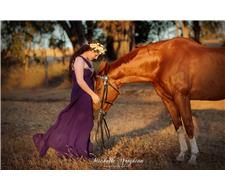Michelle Wrighton - Horse Photographer