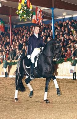 Sandro Hit: Unique genius in the modern dressage horse breeding