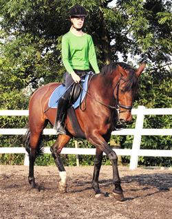 Ride the horse in an enclosed area, ideally an arena...NOT a paddock containing loose horses!